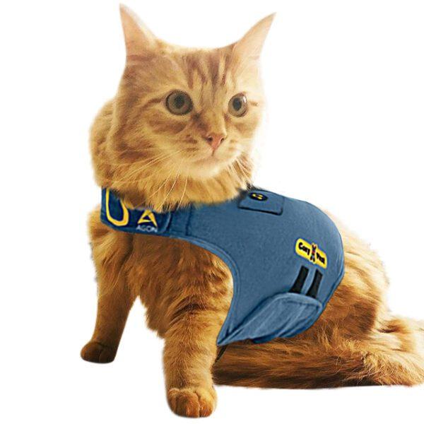 חתול עטוף בקוזי וסט