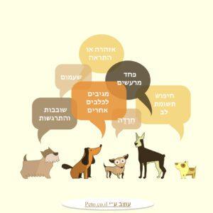 10 סיבות נפוצות לבעיות התנהגות אצל כלבים