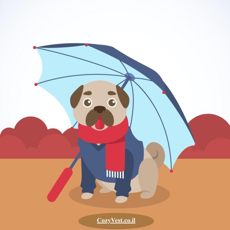 כלב מפחד מרעמים מתחת מטריה