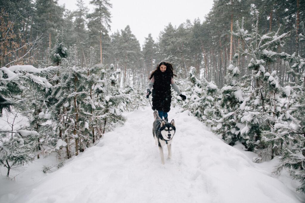 ילדה רצה עם האסקי בשלג